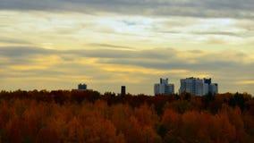 De tijdspanne van de de herfsttijd De herfst in de stad stock video