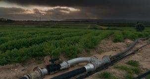 De de tijdspannezon van de landbouwtijd steekt overvloedige, irrigatiepijp aan stock video