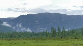 De tijdtijdspanne betrekt en mist die zich over bos en bergen in de zomerochtend bewegen De brede spruit van UHD 4k stock video