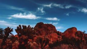 De tijdtijdspanne van woestijnjoshua tree red rock boulders stock videobeelden