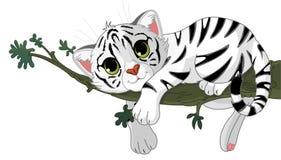 De tijger is op een tak Stock Afbeelding