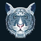 De tijger van de sneeuw Royalty-vrije Stock Afbeelding