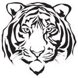 De tijger van het gezicht Royalty-vrije Stock Afbeeldingen