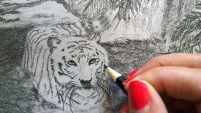 De Tijger van kunstenaarsdrawing white bengal Stock Foto's