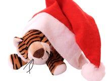 De tijgerwelp van het nieuw-jaar. Stock Fotografie