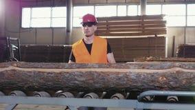 De timmerhoutindustrie - Soort houten raad na knipsel stock videobeelden