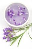 De tint van de lavendel voor aromatherapy stock afbeeldingen
