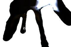 De tinta preta no whit pode o papel do vaso Imagens de Stock