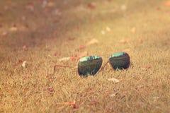 De Toebehoren van de manierzomer op de tuinachtergrond, Doubai - 1 September 2017 Stock Afbeeldingen