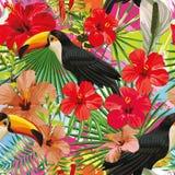 De toekan verlaat en bloeit naadloos patroon kleurrijke bont backg Stock Foto's