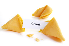 De toekomstige groei stock foto's