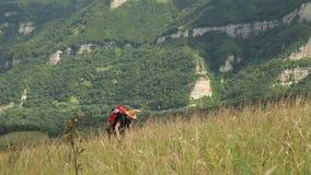 De toerist in een hoed en een rugzak gaat de heuvel uit stock video
