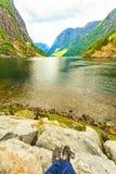De toerist geniet fjord van mening, Noorwegen royalty-vrije stock fotografie