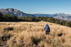De toerist met rugzak bekijkt weinig hut in hooglanden royalty-vrije stock foto's