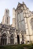 De toerist neemt beeld van dom toren in Utrecht Stock Fotografie