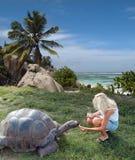 De toerist voedt reuzeschildpad. Royalty-vrije Stock Foto