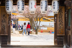 De toeristen bekijken Sakura-boom in Itsukushima-Heiligdom Royalty-vrije Stock Afbeelding