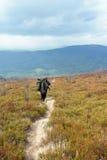 De toeristen beklimmen tot de bovenkant van de berg van Runa in de Karpaten Stock Fotografie