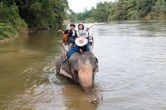 De toeristen berijden een olifant stock foto's