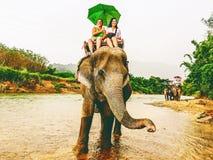 De toeristen berijden olifant in Thailand Royalty-vrije Stock Afbeelding