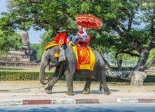 De toeristen berijden op een olifant in het Historische Park Stock Fotografie