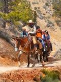 De toeristen berijden Paarden, Bryce National Park, Utah Royalty-vrije Stock Fotografie