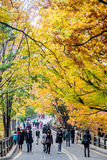 De toeristen bezoeken een oriëntatiepunt van Seoel Royalty-vrije Stock Afbeeldingen