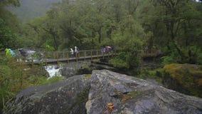 De toeristen die over een wildernis lopen overbruggen in de regen stock footage