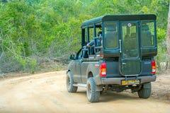 De toeristen letten op wilde dieren royalty-vrije stock afbeelding