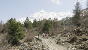 De toeristen met de gids zijn op de trekking in Himalayagebergte, Manaslu-gebied, Nepal stock footage