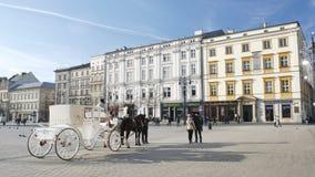 De toeristen nemen beeld dichtbij wit paardvervoer stock videobeelden