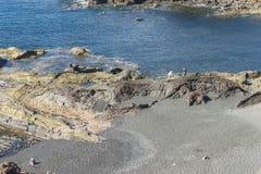 De toeristen slepen, Gr Golfo royalty-vrije stock fotografie