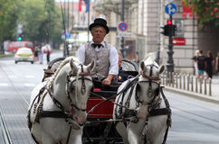 De Toeristische attractie/Fiacre/de Taxichauffeur van Zagreb stock foto's