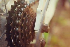 De toestellen van asterisken van een fietsclose-up op een achtergrond van een groen bos Stock Foto's