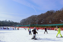 De toevlucht van de het Parkski van Daemyungvivaldi Stock Foto