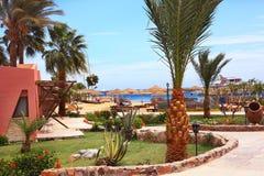 De toevlucht van het strandhotel buiten met palm en overzees stock fotografie