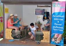 De toevluchteigenaars houden hun voeten in aquarium met vissen en spruitproces op hun smartphones Stock Afbeeldingen