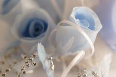 De toga van het huwelijk Stock Afbeeldingen