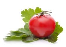 De tomaat en de peterseliebladerenstilleven van de kers Stock Foto