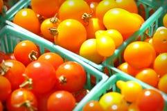 De tomaat van de kers Stock Afbeeldingen