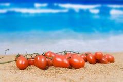 De tomaat van de kers Royalty-vrije Stock Fotografie