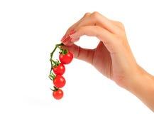 De tomaat van de kers Stock Foto's
