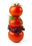 De tomaat van de sandwich royalty-vrije stock foto's
