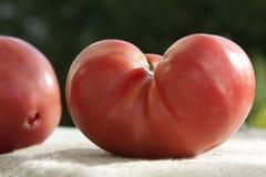 De Tomaat van het hart stock foto