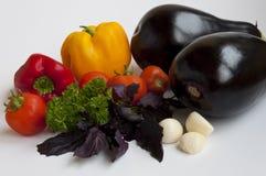 De tomaten en het basilicum van de aubergine met peterselie Royalty-vrije Stock Afbeeldingen