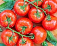 De tomaten met water laat vallen 3 Royalty-vrije Stock Foto