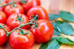 De tomaten met water laat vallen 6 Royalty-vrije Stock Foto's
