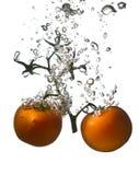 De tomaten op een tak vallen in het water Stock Foto