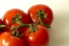 De tomaten sluiten omhoog Royalty-vrije Stock Afbeeldingen