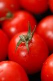 De tomaten van de kers stock foto's